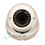DLE-800  Camera Minidome , CCD SONY   800 TVL  Infrarouge pour 20 metre et objectif fixe 3.6mm