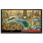 ECRAN LED INTERACTIF VIEWSONIC IFP8650